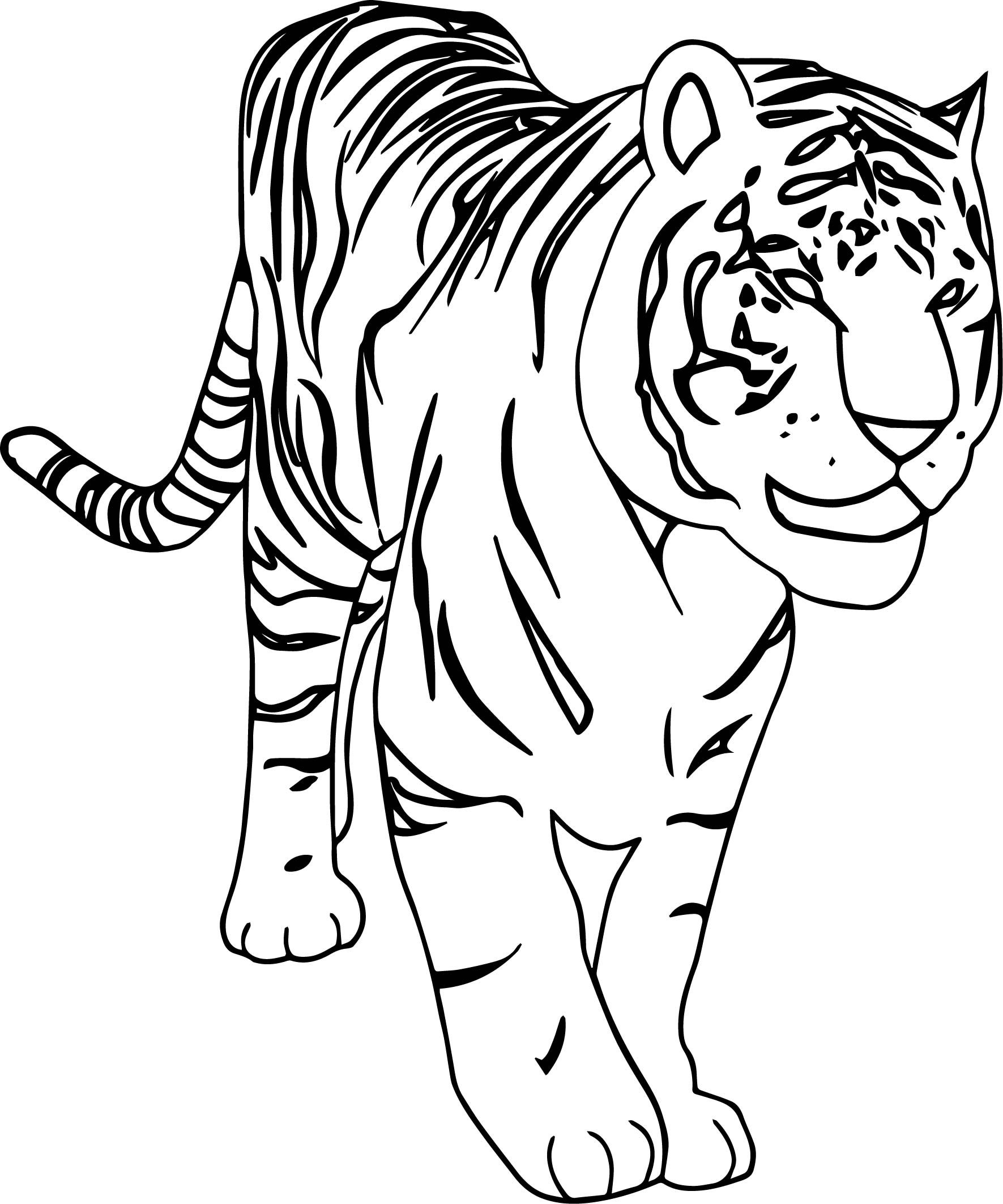 Walking Danger Tiger Coloring Page