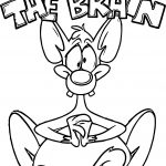 Animaniacs Volume Pinky The Brain Coloring Page