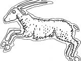 Antelope Jumping Side View Coloring Page