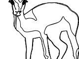 Antelope Staring Antelope Coloring Page