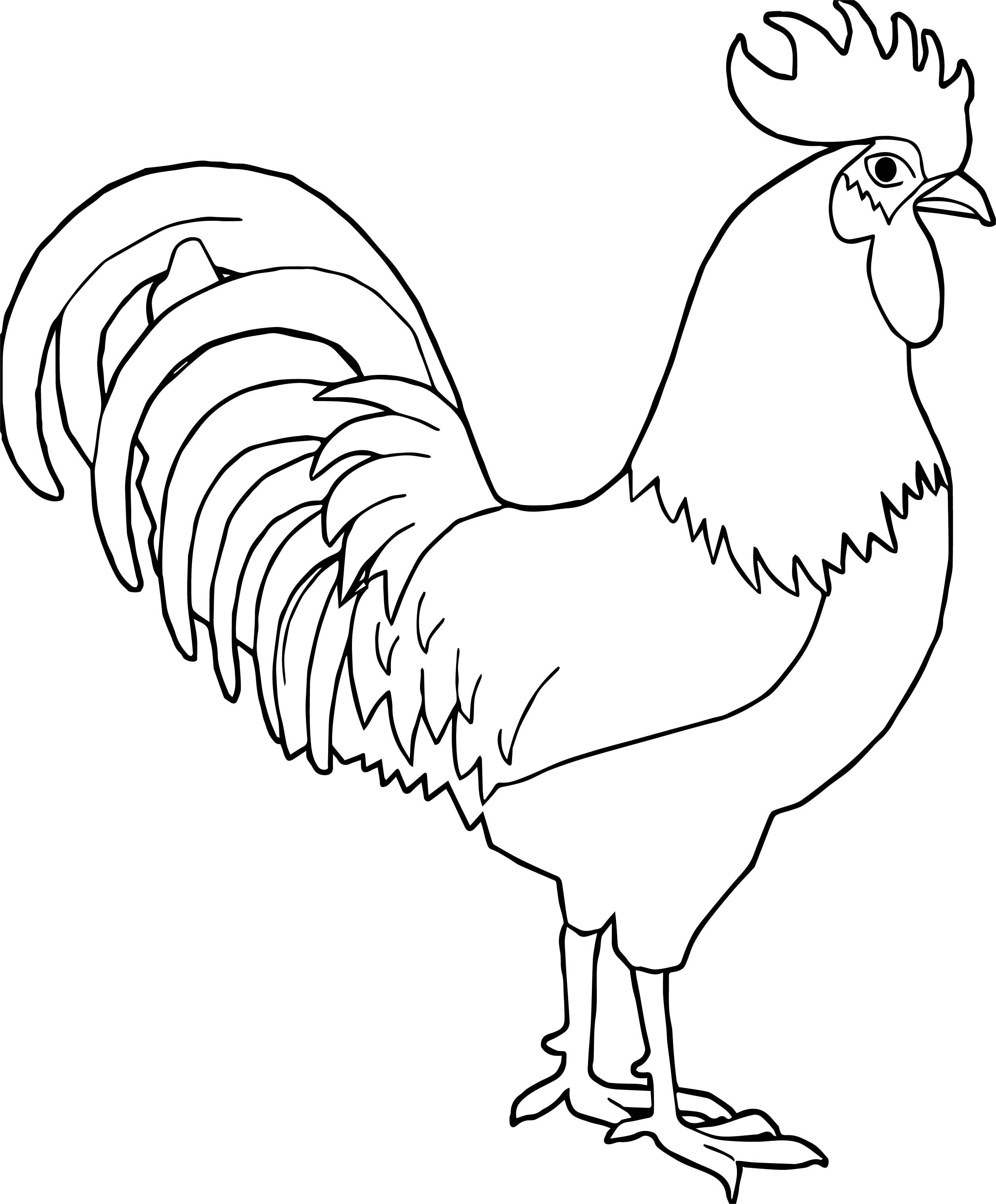 Any Rooster Coloring Page