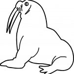 Any Walrus Coloring Page