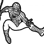 Baby Spiderman Spideys Web Teaches About Tensile Strength Spider Man Coloring Page