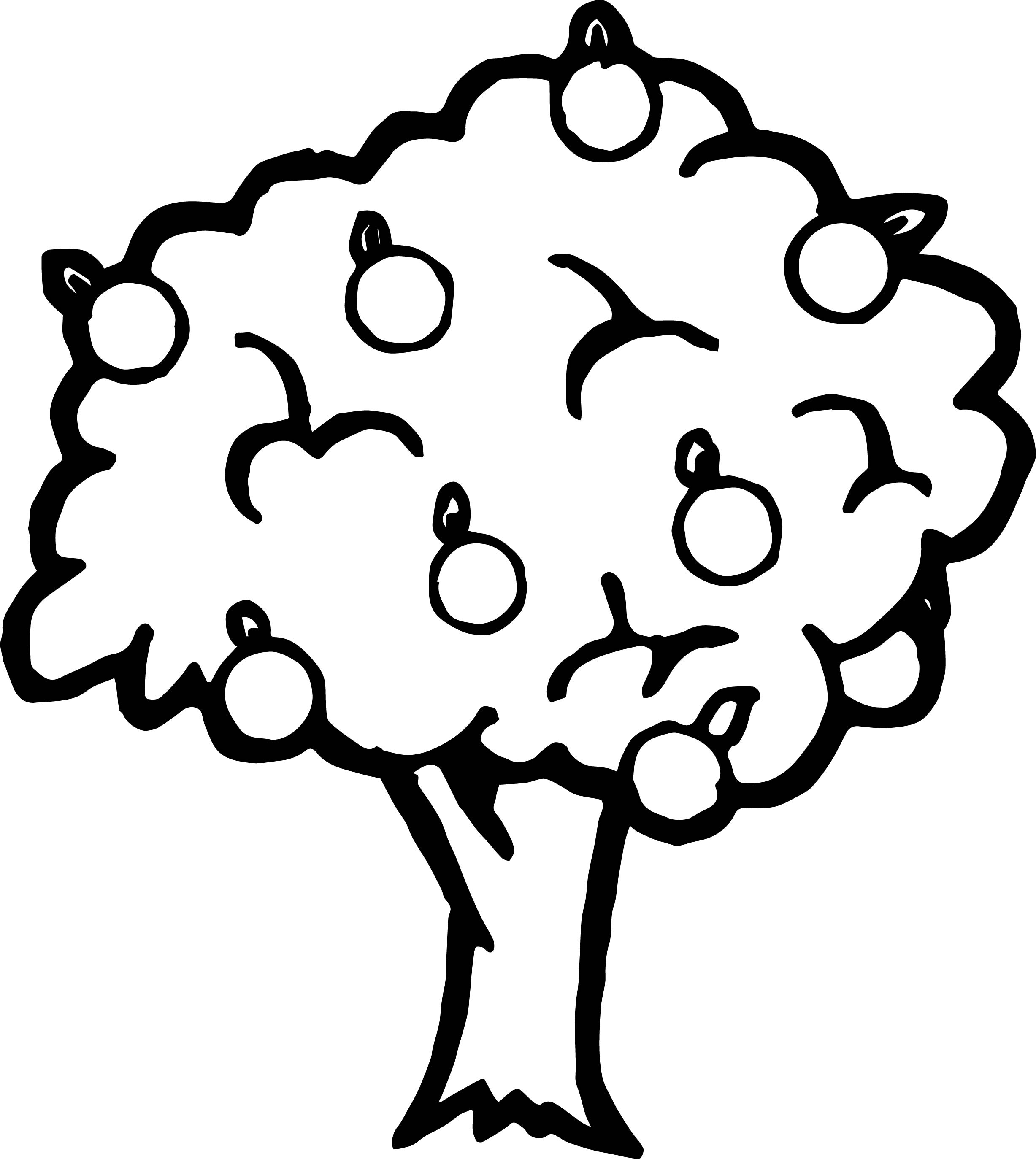Bold Apple Tree Coloring Page Coloring Pages For Apple