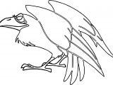 Crow Cartoon Aurora Maleficent Coloring Page