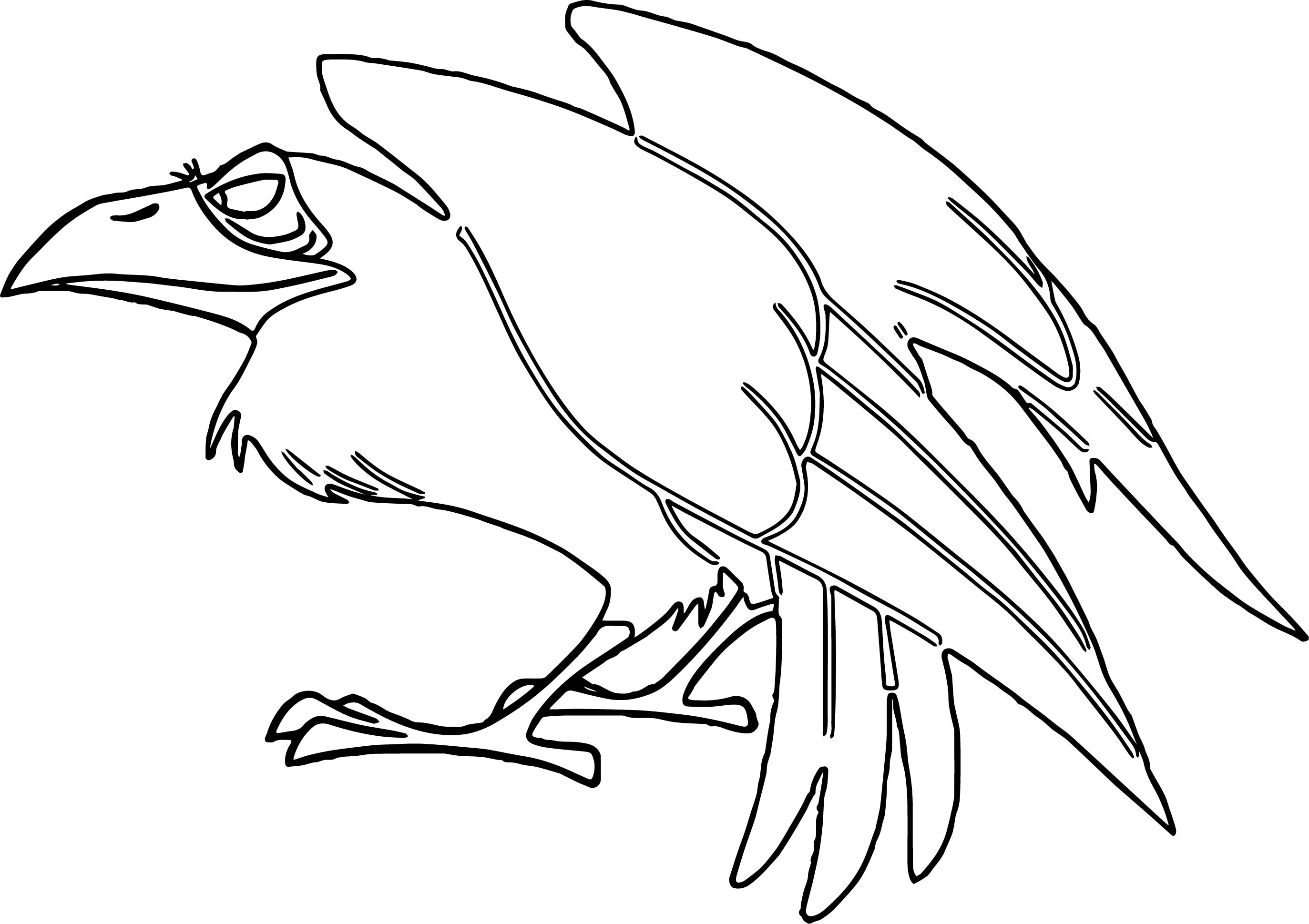 coloring pages of a crow - photo#26