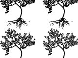 Four Apple Tree Coloring Page