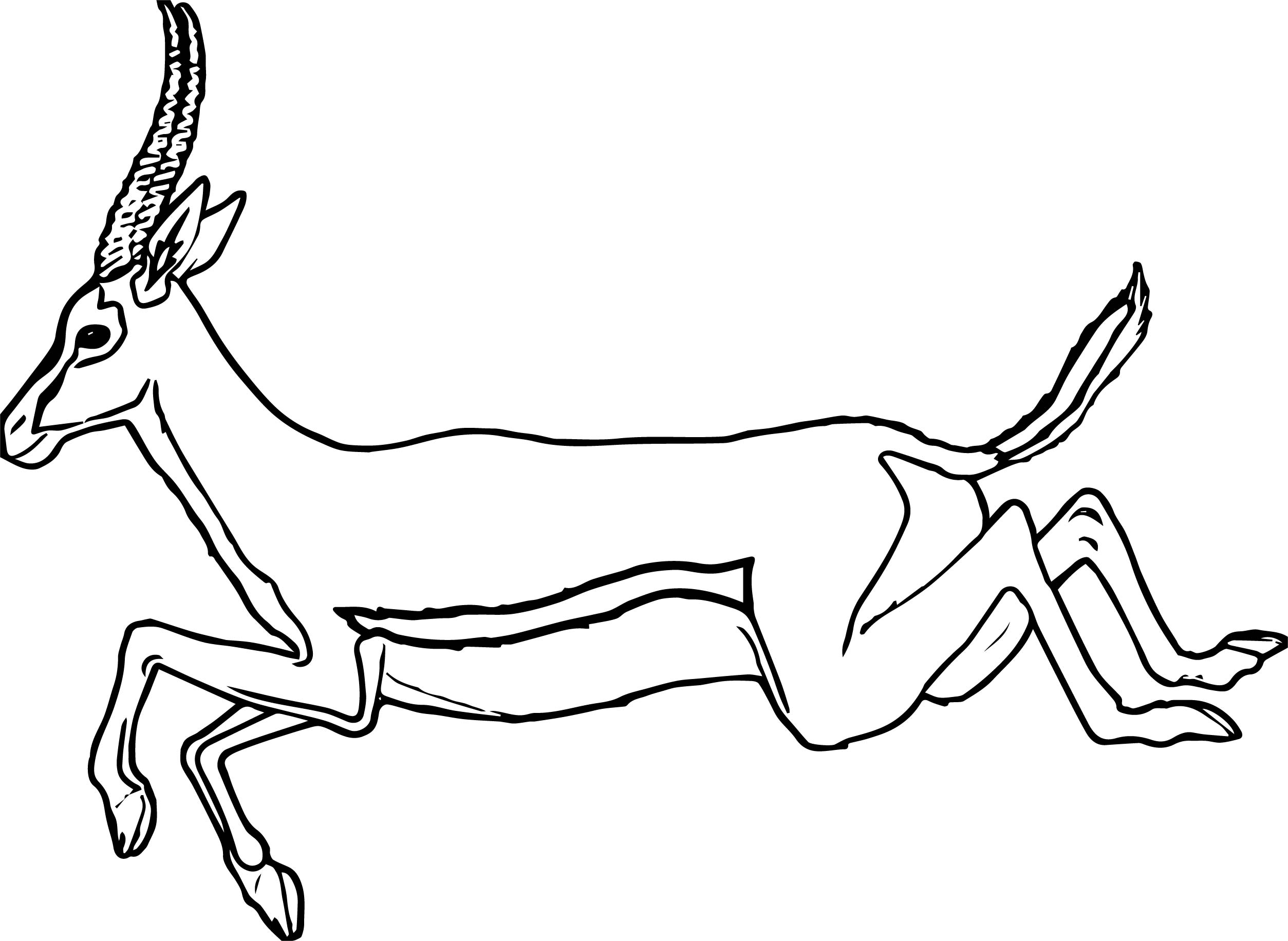 Coloring Pages Of North American Animals : North american animals coloring pages best free