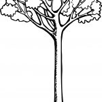Lovely Apple Tree Coloring Page