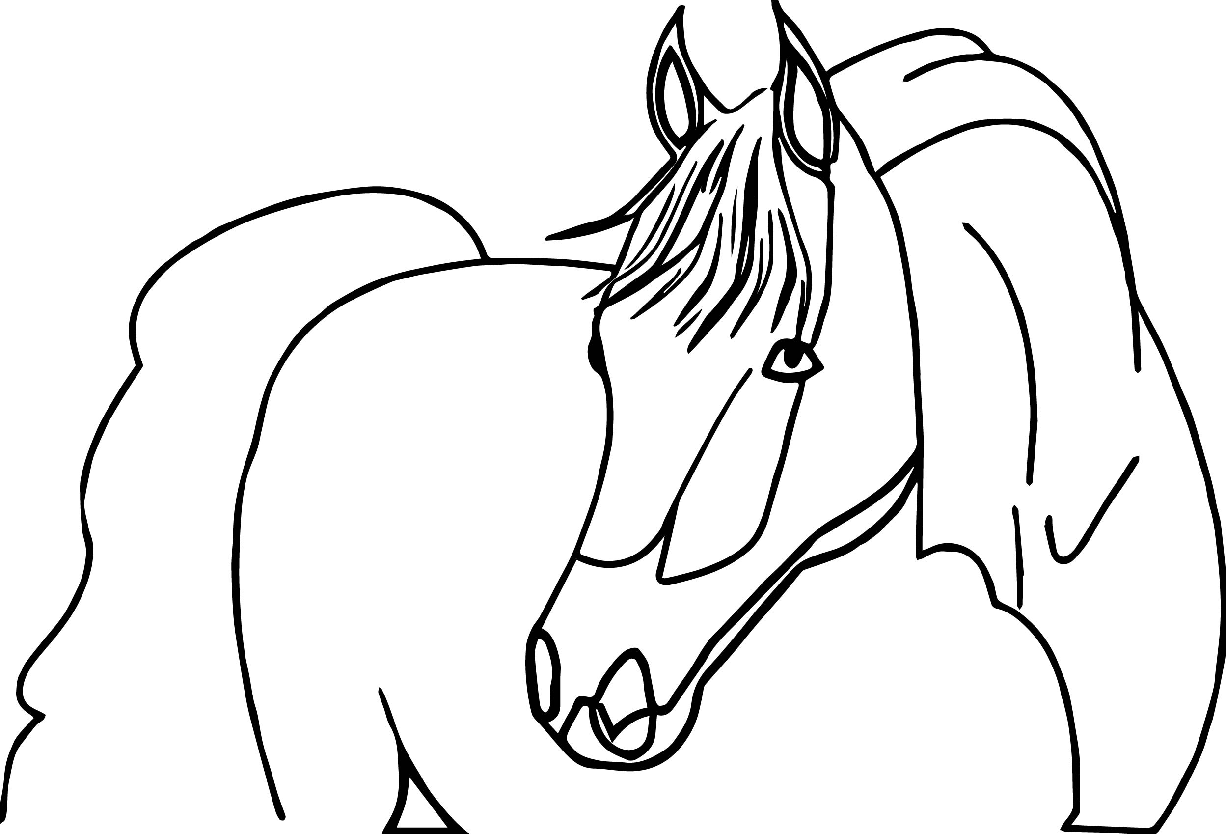 Proud Arabian Horse Coloring Page