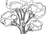 Splendid Apple Tree Coloring Page