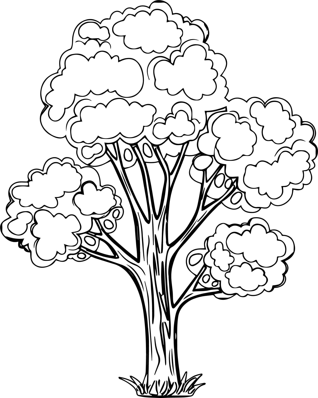 Splendid Apple Tree Coloring Page