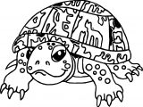 Tasteless Tortoise Turtle Coloring Page