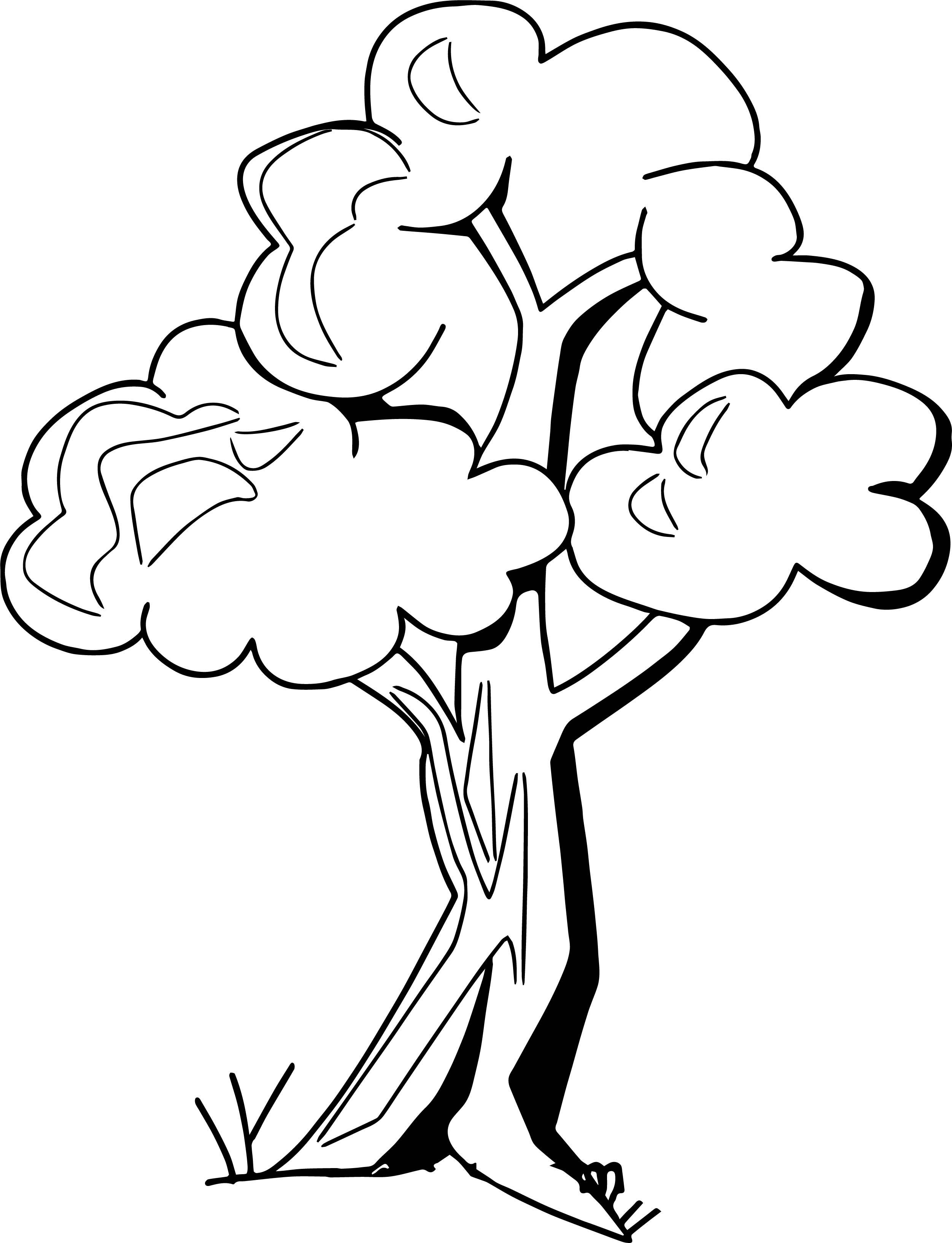 Zany Apple Tree Coloring Page   Wecoloringpage.com