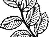 Autumn Seven Leaf Coloring Page
