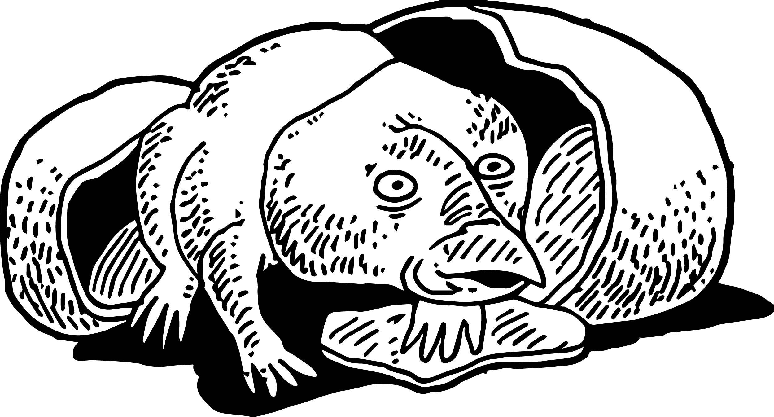 Baby Dinosaur Interest Coloring Page