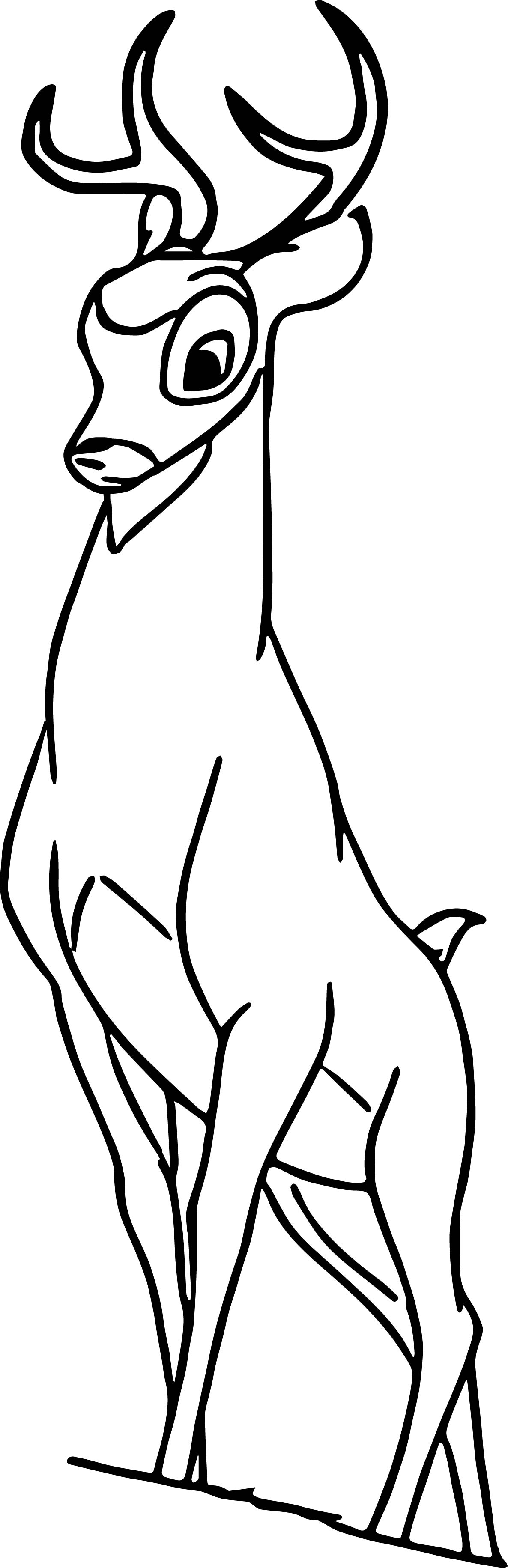Bambi grown coloring pages for Coloring pages bambi