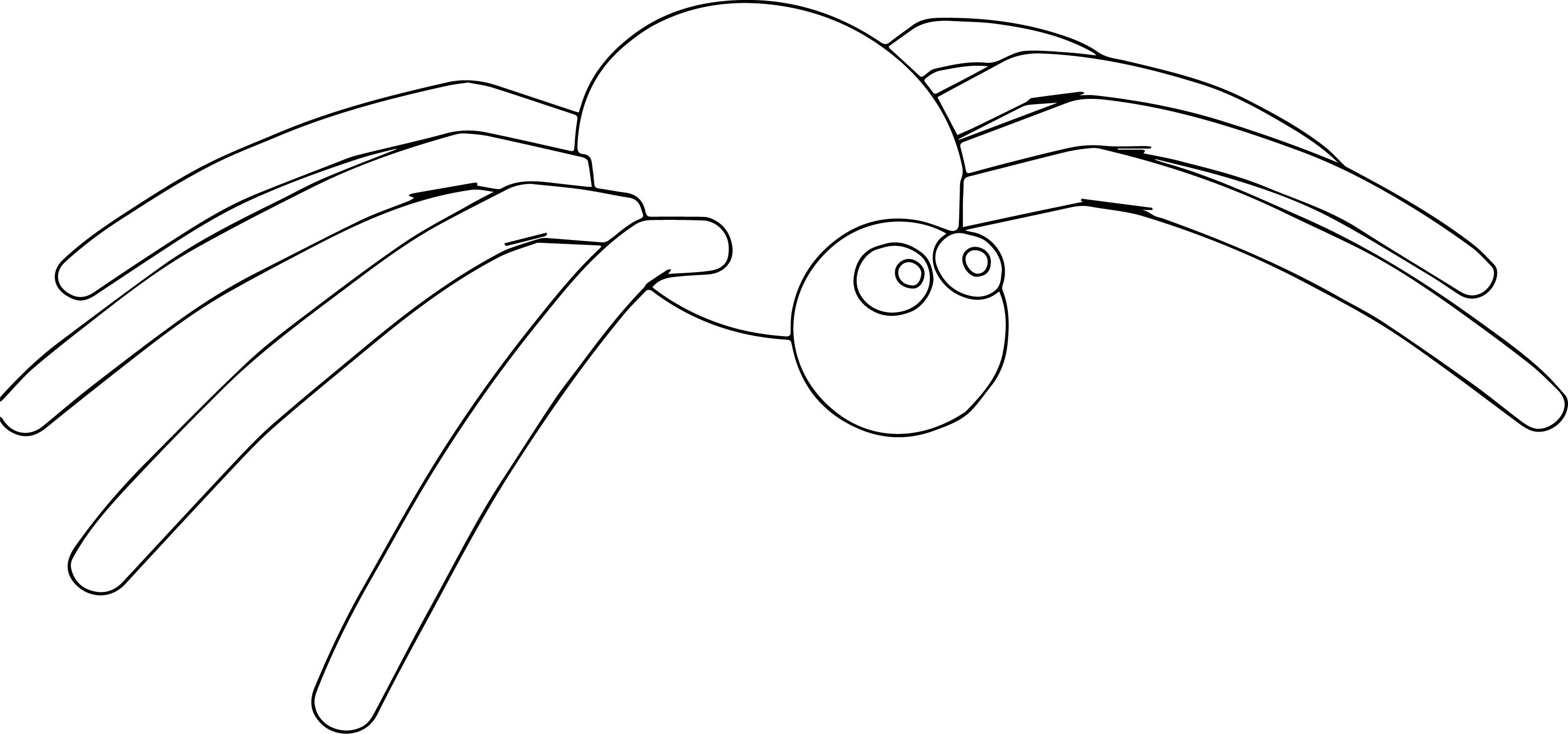 Cartoon Sweet Spider Coloring