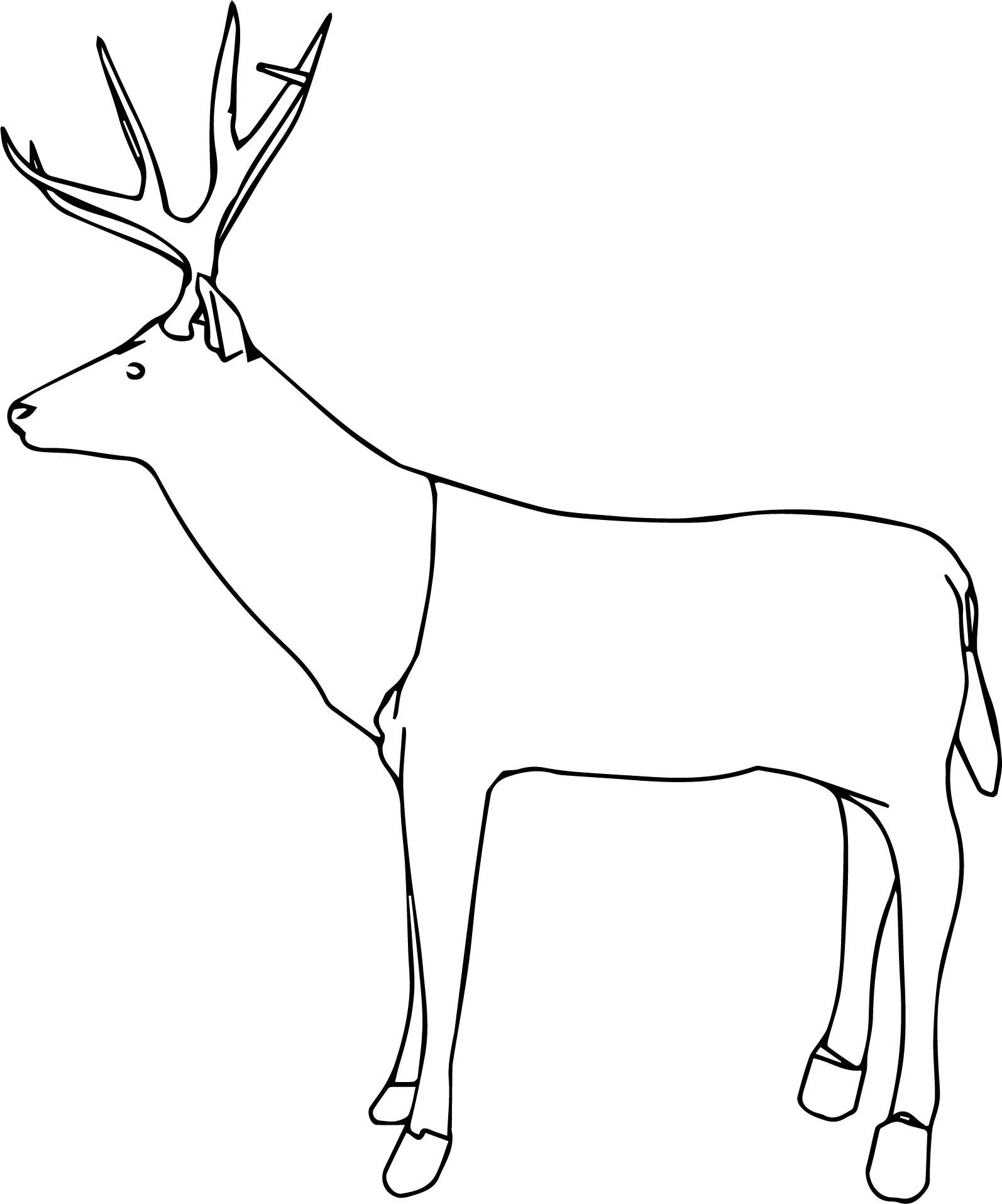 Deer Side Coloring Pages
