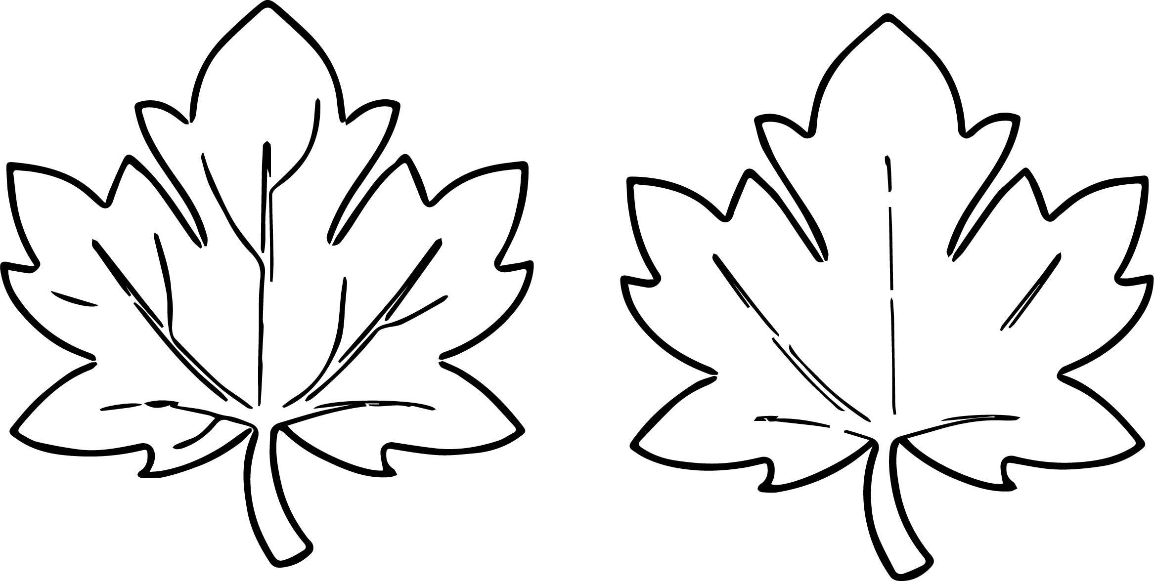leave coloring pages - fall leaves images for fall leaf coloring page