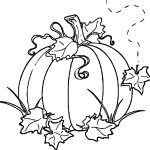 Free Autumn Pumpkin Coloring Page