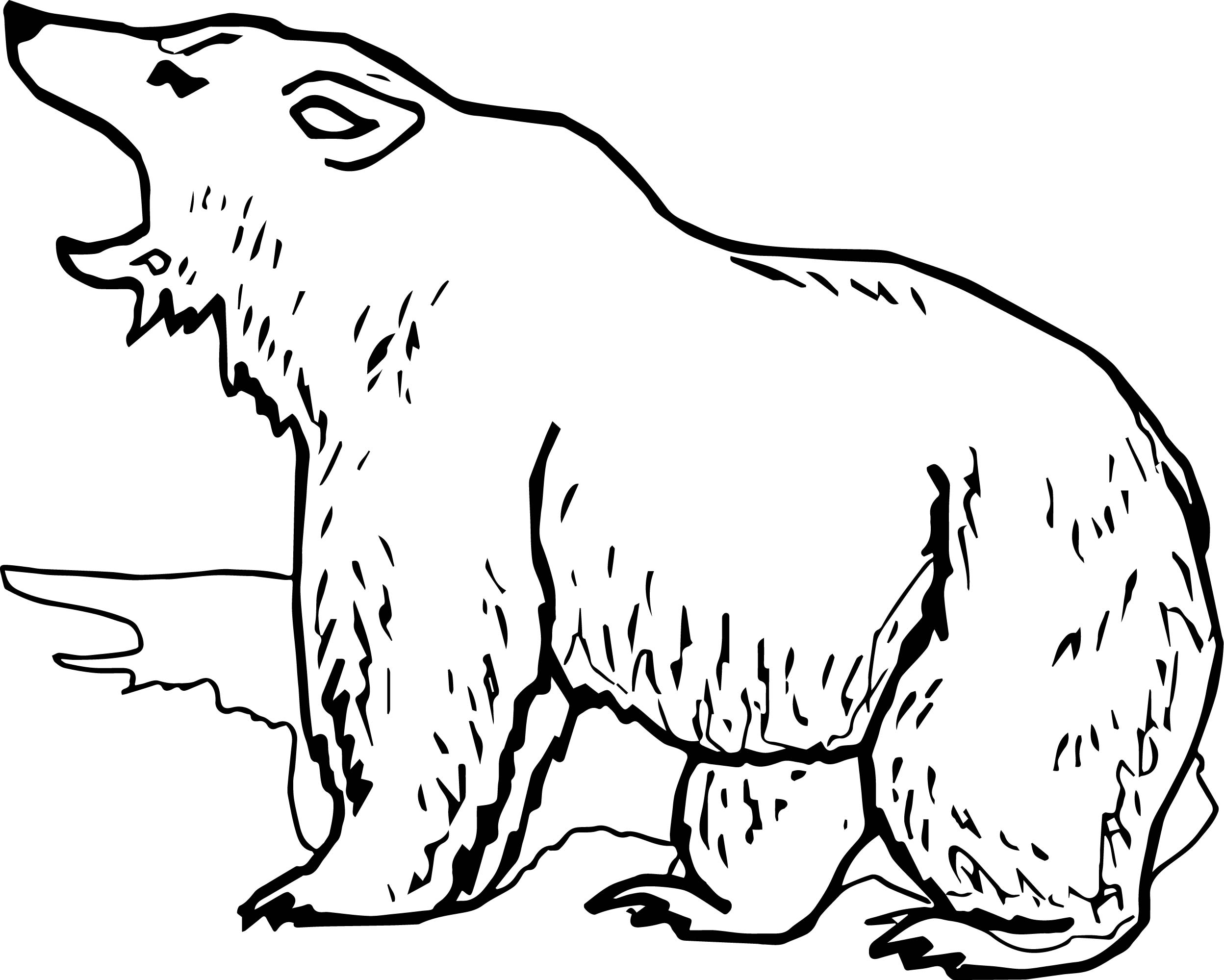 Grizzly Bear Yell Coloring Page | Wecoloringpage