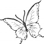 Large Just Butterfly Coloring Page