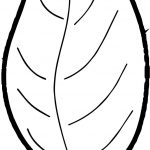 Leaf Fall Leaves Beautiful Autumn Coloring Page