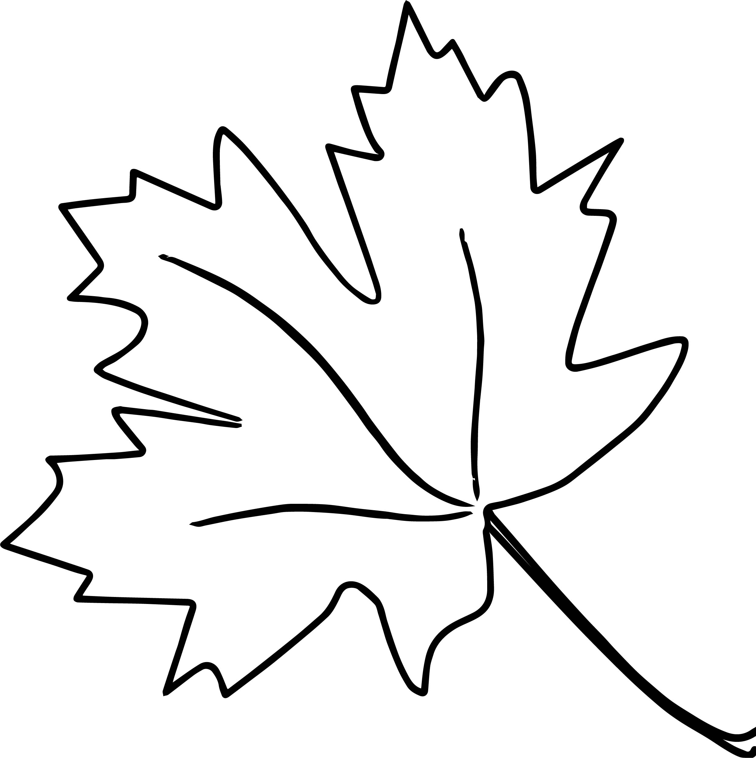 New autumn leaf coloring page for Leave coloring pages