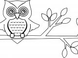 New Autumn Owl Coloring Page