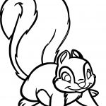 Snow White Forest Animals Snow White Squirrel Cartoon Coloring Pages