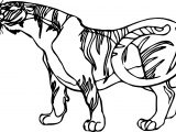 Tiger Side Coloring Page