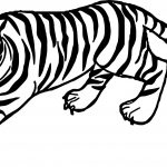 Tiger Yell Coloring Page