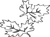 Two Autumn Leaf Coloring Page