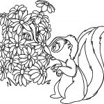 Bambi S Flower The Skunk Flower Mate Coloring Pages