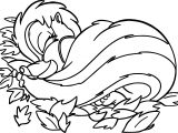 Bambi S Flower The Skunk Flower Sleep Coloring Pages