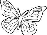 Blue Black Butterfly Coloring Page
