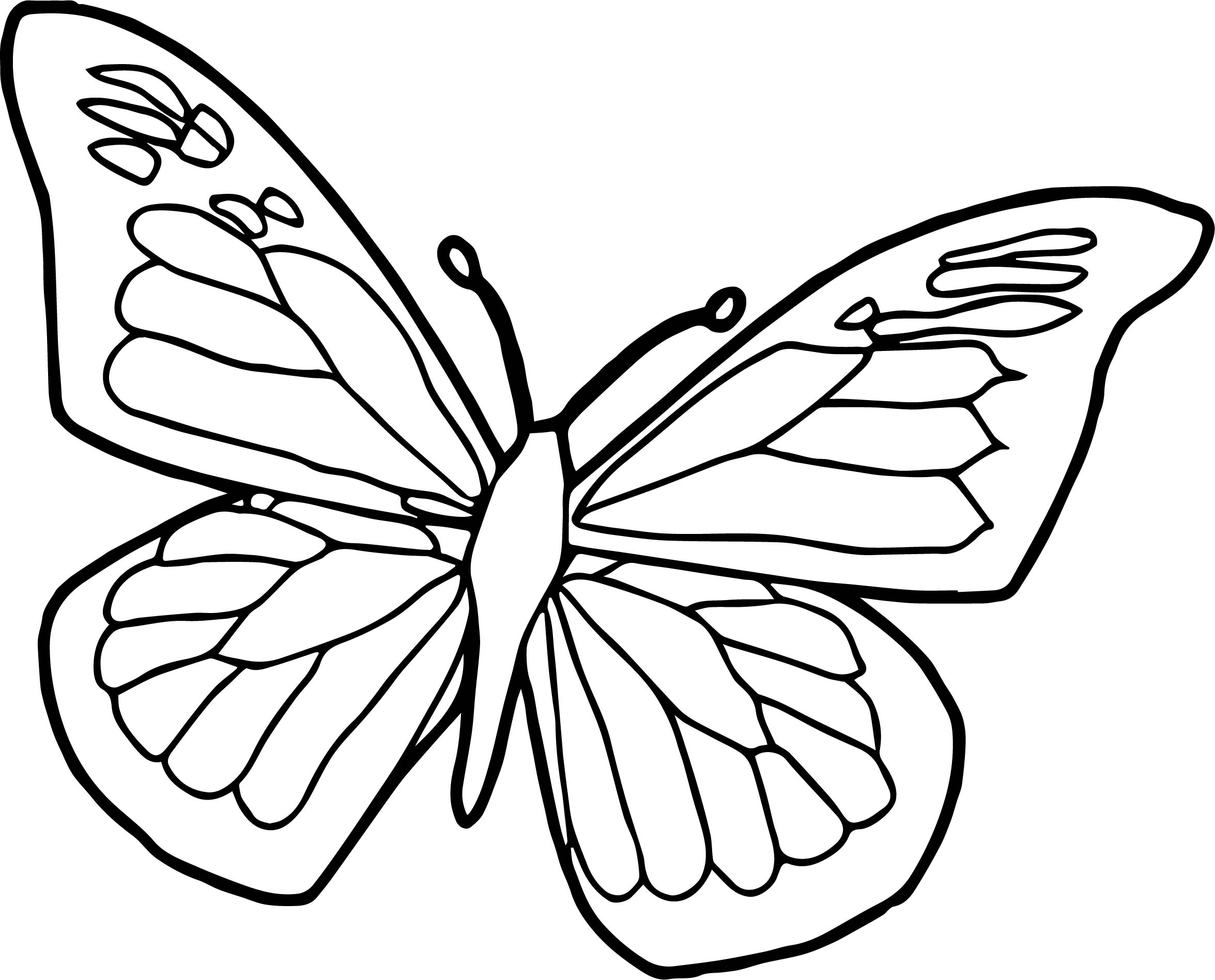 Blue Black Butterfly Coloring Page | Wecoloringpage
