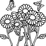 Butterfly Flower Coloring Page
