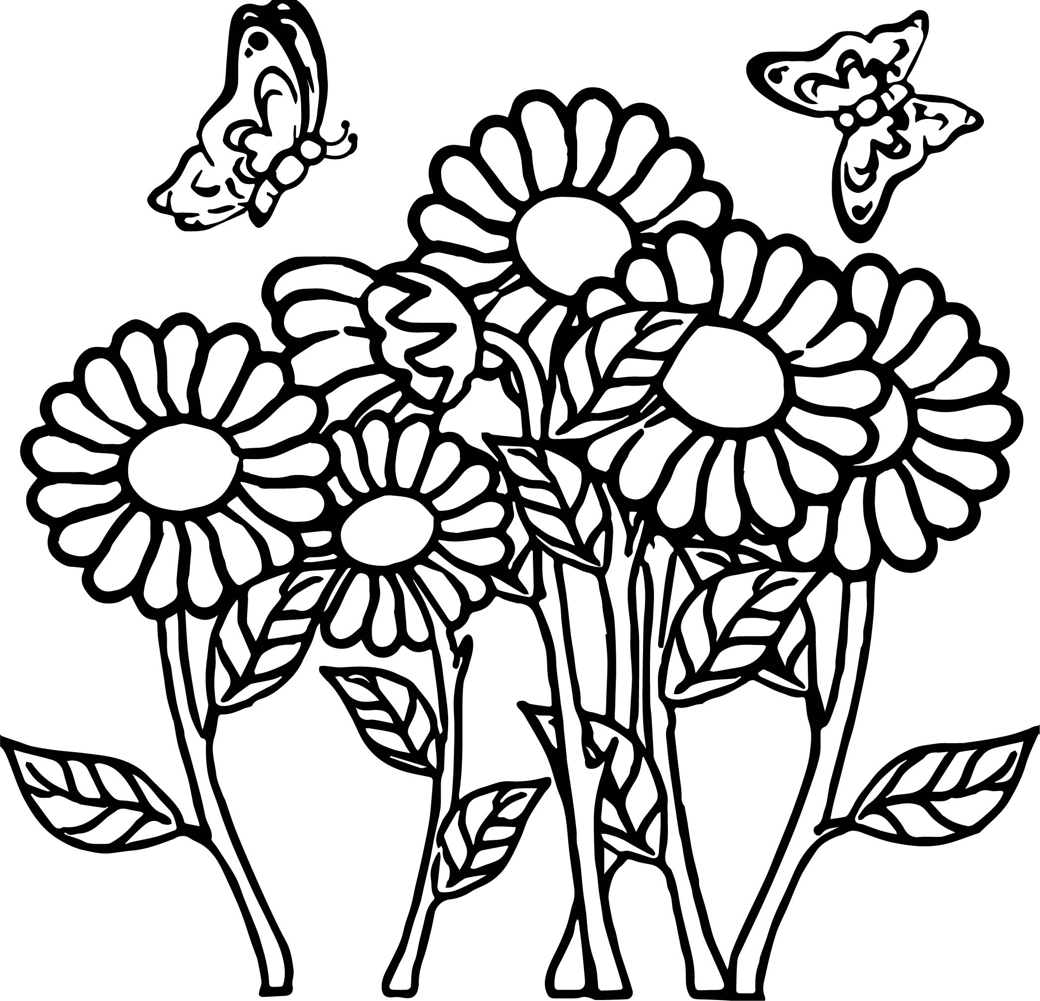 butterfly flower coloring page coloring page butterfly flower