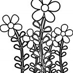 Cartoon Daisies Coloring Page
