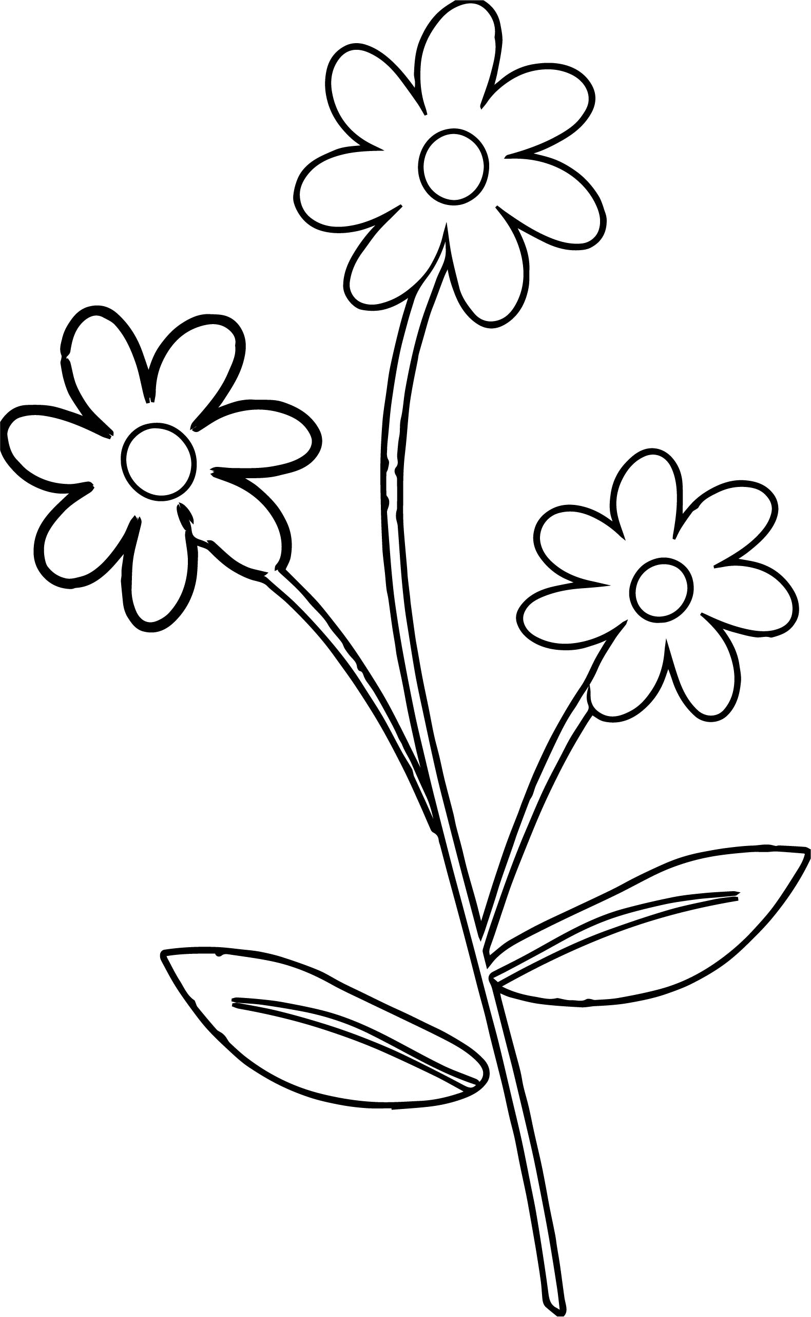 Cute Flower Border Flowers Coloring