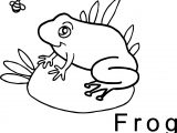 Frog Bee Coloring Page