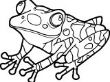 Frog Look Up Coloring Page