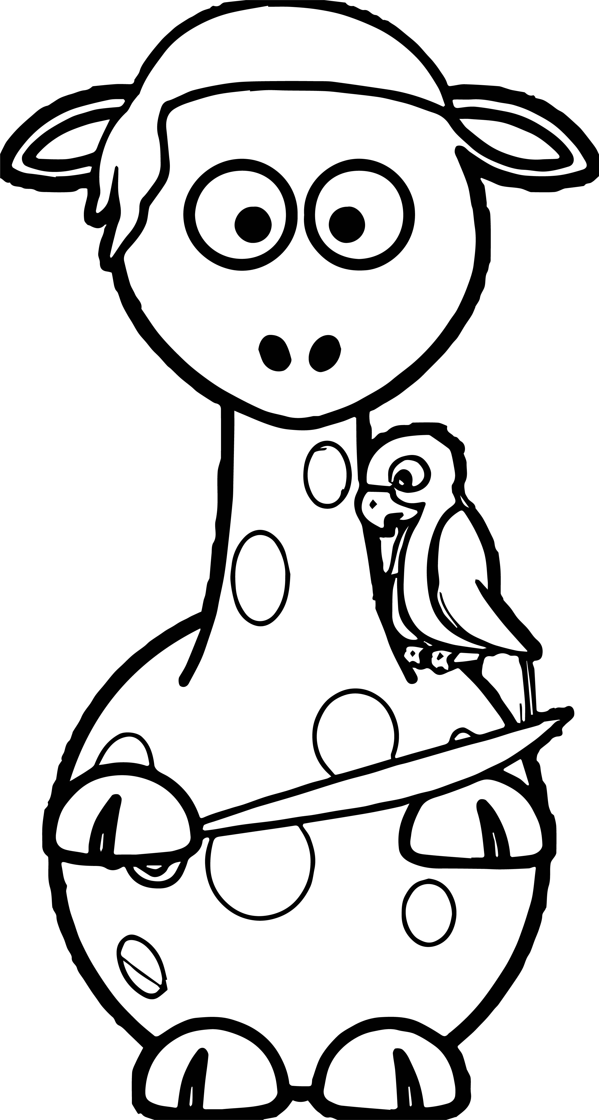 pittsburgh pirates coloring pages - pirate parrot coloring pages bltidm