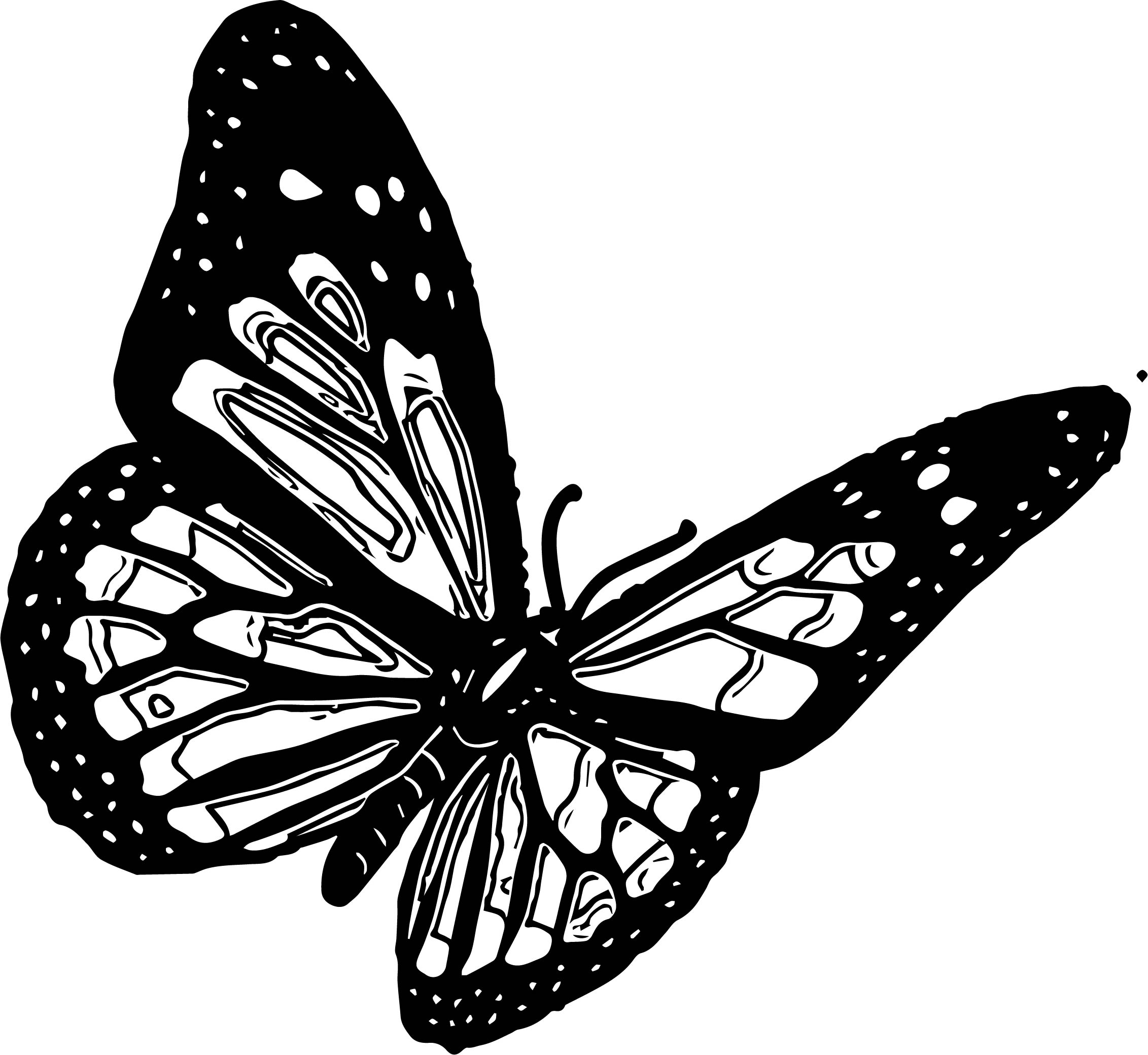 Good Black Butterfly Coloring Page