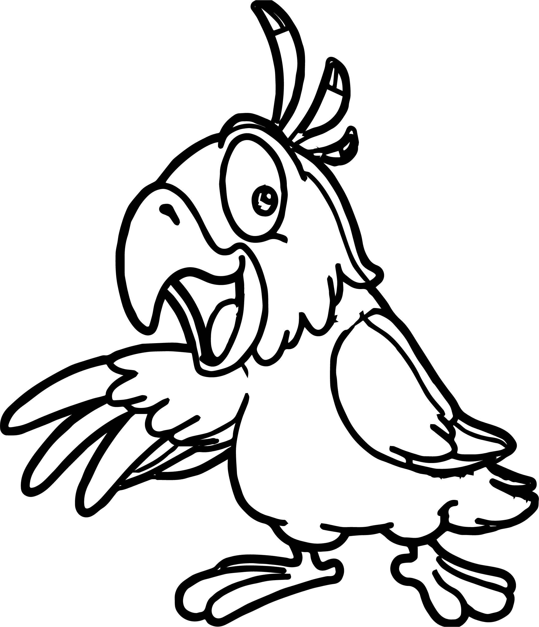 coloring pages parrot parrot bird coloring pages