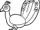 Peacock Bird Coloring Page