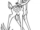 Perfect Bambi Coloring Pages