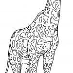 Realistic Beautiful Giraffe Coloring Page